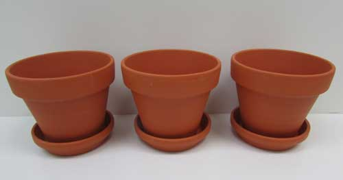 Pots1